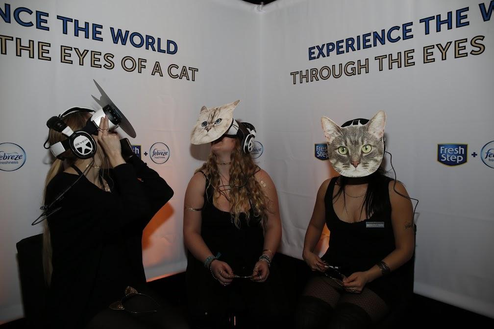Catdance VR