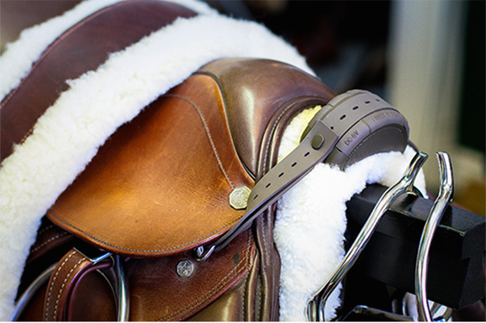 Western Saddle Placement