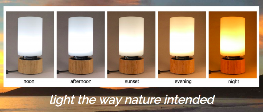 natural light bulbs for office. Sunlight Inside\u0027s Revolutionary Natural Lighting Solutions Are Changing The Way That Home-based Entrepreneurs Do Their Work Each Day. Light Bulbs For Office S