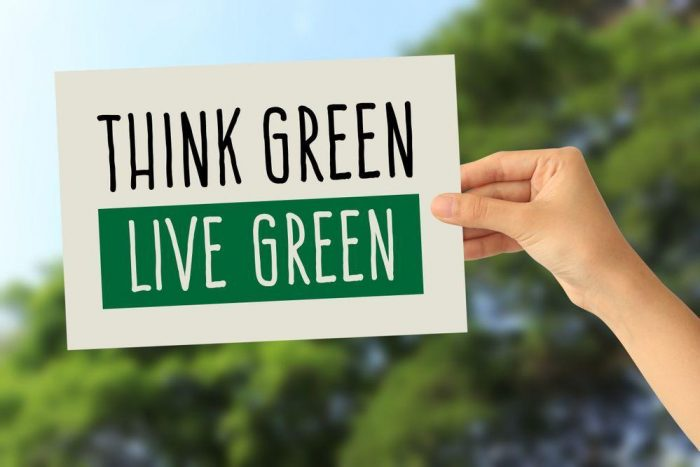 Improve Your Quality of Life By Going Green | Home Business