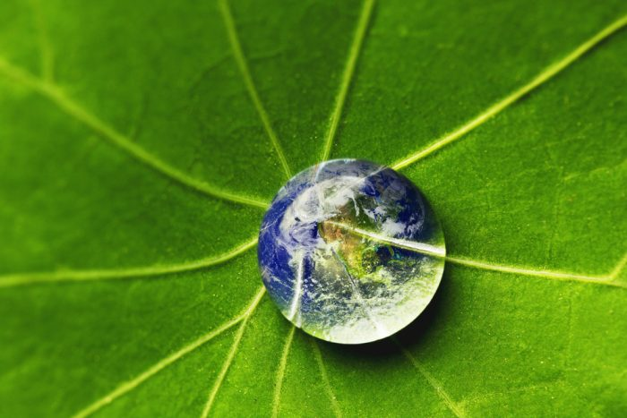 Conservation of Earth